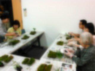 苔玉教室(画像処理済)